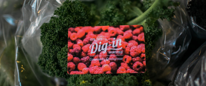 Community, Confidence and Carrots: Dig-In's 5th AGM